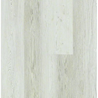 Basilica Plus - Century Pine From Shaw Tile