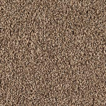 Hidden Attraction - Dried Moss From Mohawk Carpet