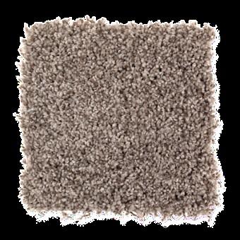 Vintage Luxury - RICH EARTH From Mohawk Carpet