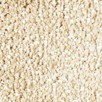 Exquisite Shades - Georgian From Mohawk Carpet