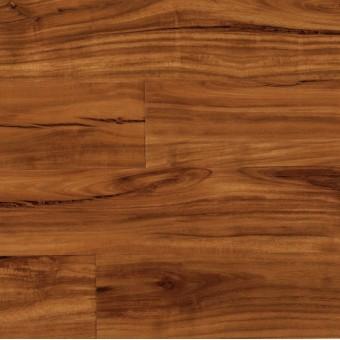 COREtec Plus 5 - Gold Coast Acacia - In Stock! From COREtec Floors