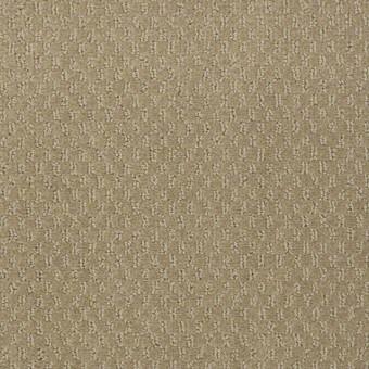 Latest Trend - Alpaca From Shaw Carpet