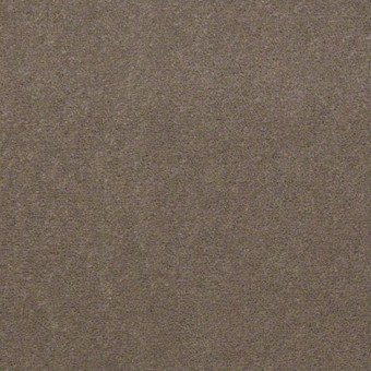 Town Hall 30 - Bashful Taupe From Showcase Collection