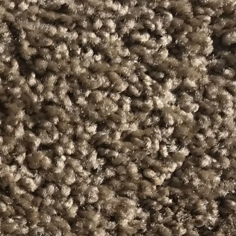 Rave - Apartment Grade Carpet - Wheat From Showcase Collection