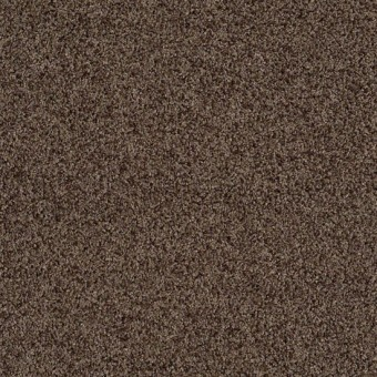Truly Relaxed III - Weathered Wood From Shaw Carpet