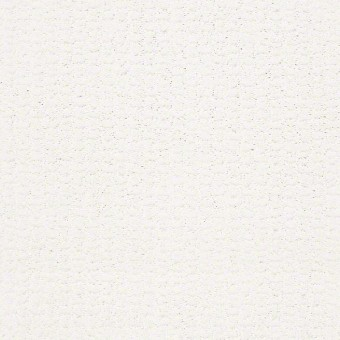 Dunes II - White Hot From Showcase Collection