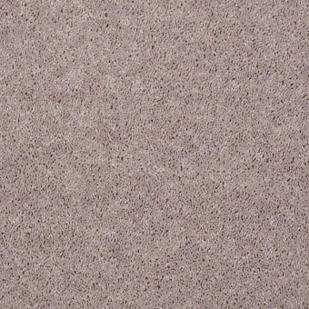 Point Guard - Bare Mineral From Shaw Carpet