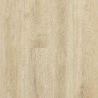 Vision Works - Sandstone Beige From Shaw Laminate